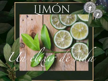 Limón, elixir de vida que eleva el sistema inmune.
