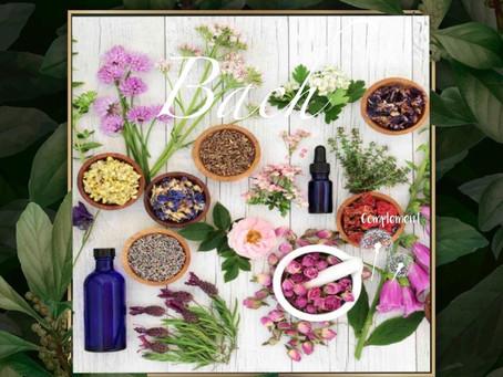 Bach y sus remedios florales, flores que sanan.
