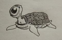 One Eyed Turtle.jpg