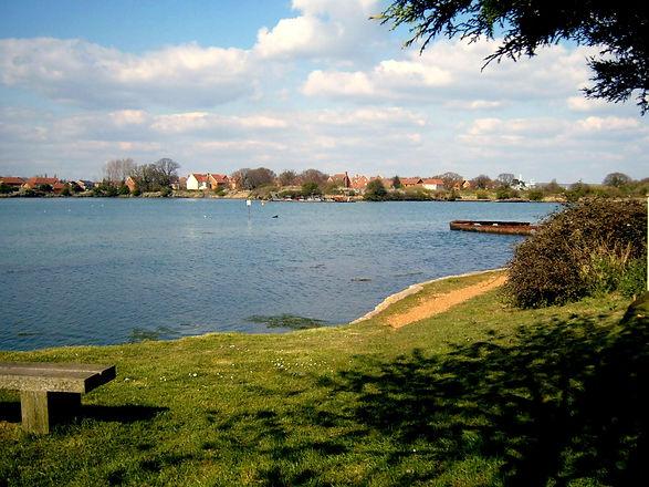 Lake from behind tree.jpg