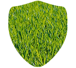 Grass Shield.png