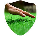 Lawn Shield Org.png
