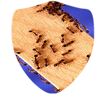 Ant Shield.png