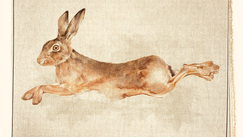 Running Hare fabric panel