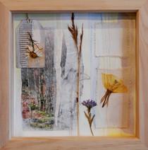 Erecura  mixed media on paper 24cm x 24cm