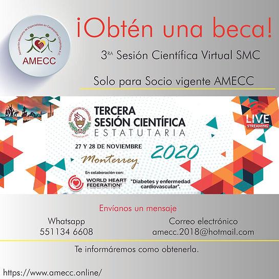 Becas AMECCn_Mesa de trabajo 1.jpg