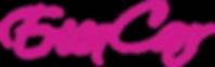 erica-carr-logo.png