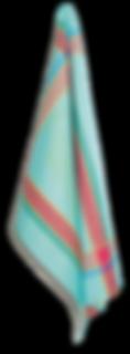 turquoise%20cassis%20kitchen%20towel_edi