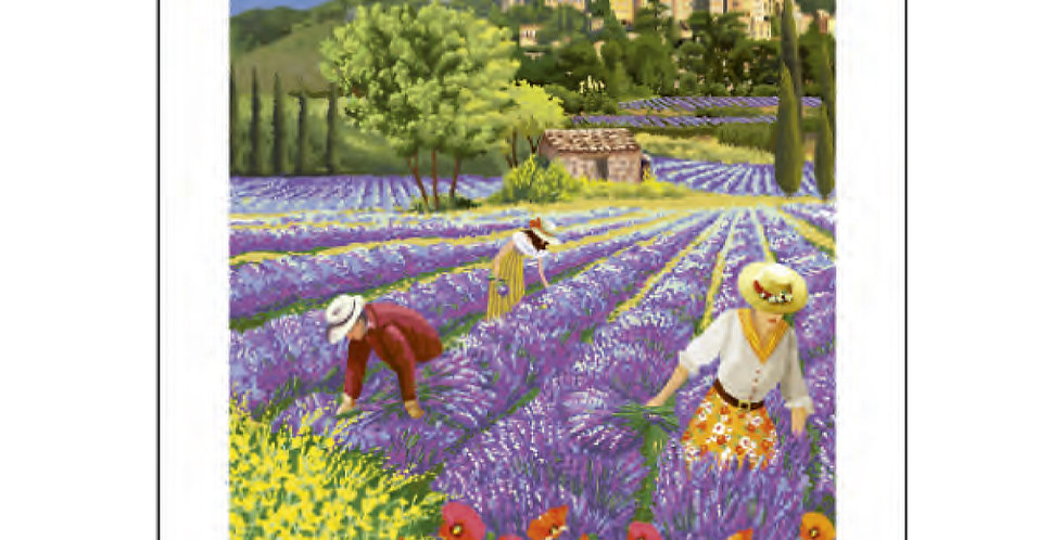 Lavender Fields of Provence Printed Cotton Kitchen Towel