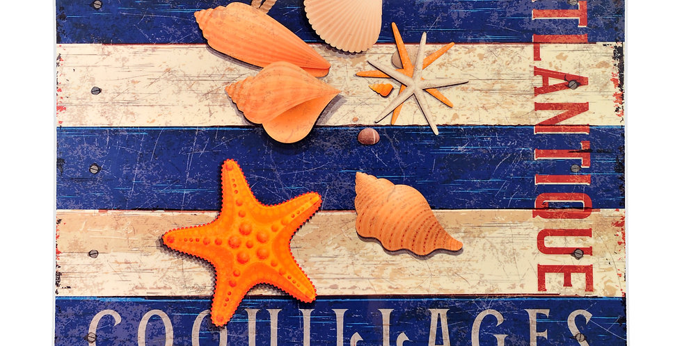 Blue Striped Seashell Laminated Placemat