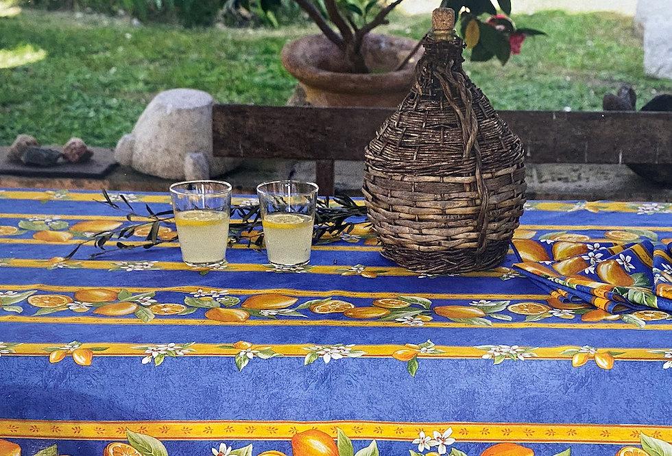 Blue Citron Striped Coated Cotton Tablecloths