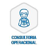 ic_solucoes_consultoria.png