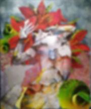79082758_1430546497111385_25674369602682