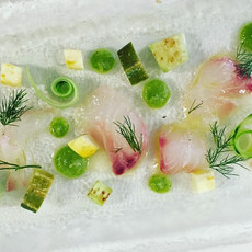Summer crudo  Cucumber & Wild Snapper