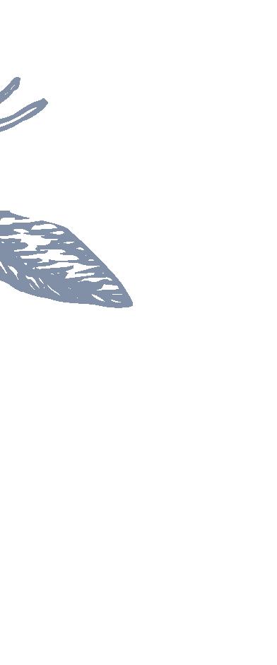 Logo e desenho Luanne Marques - Fundo Tr