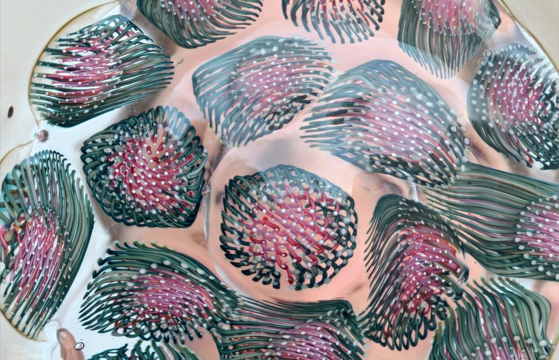 """Teller """"Anemonia"""", Detail"""