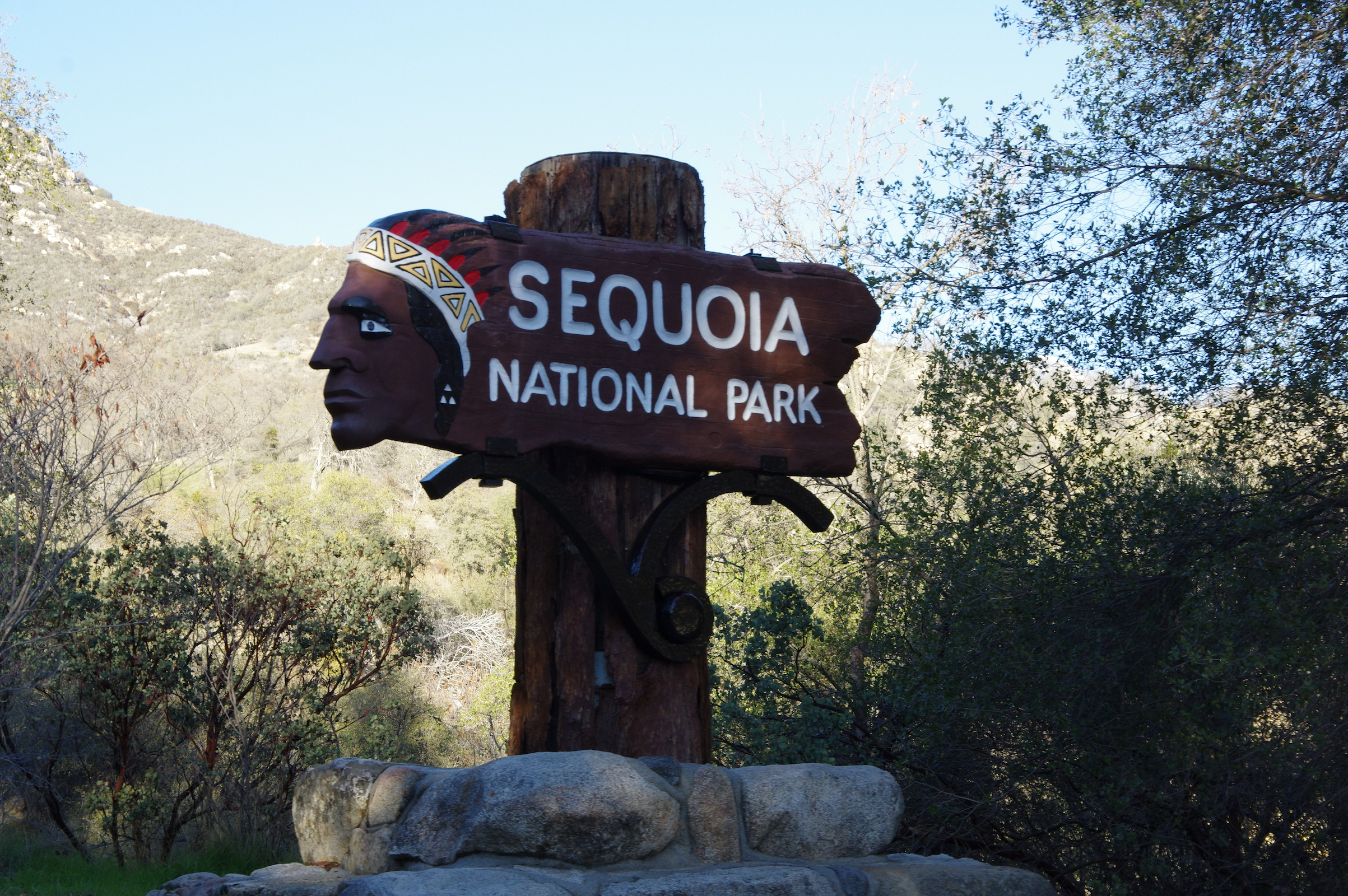 SequoiaNationalPark copy