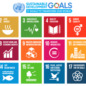 The 17 Sustainable Development Goals - Part 1