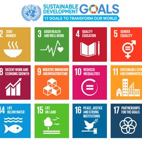 The 17 Sustainable Development Goals - Part 1