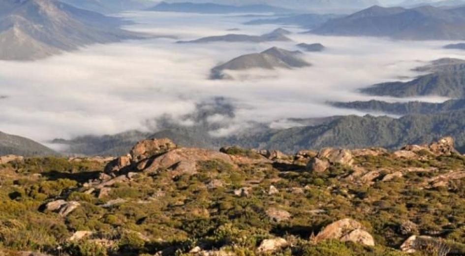 Alpine tundra and valleys of temperate rainforests in SW Tasmania