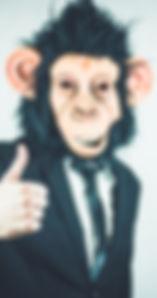monkey-2710658_1280.jpg