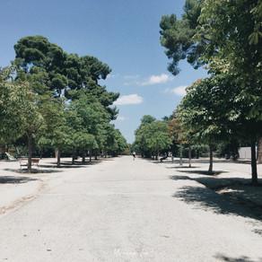 跟Y編走 馬德里│閉園的麗池、必逛的大道