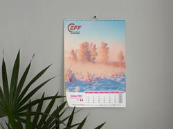 Calendriers Ceff