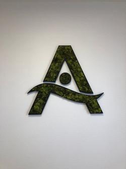 Logo végétal pour Axona Paie Consulting Soissons