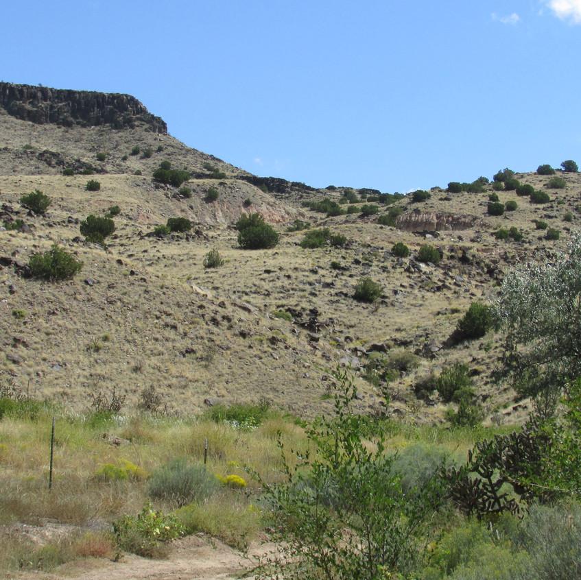 La Bajada Hill 2012