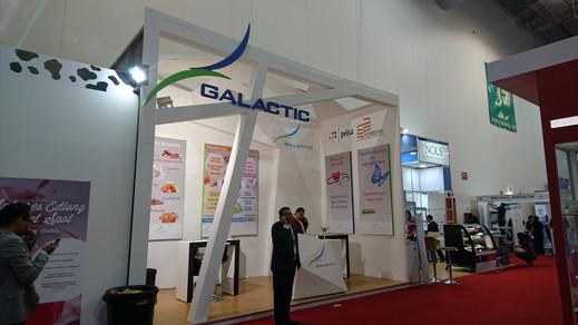 Expo Art   Diseño de stands para expos   Cliente: Galactic