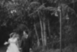 qunta-dos-pinheirais-2