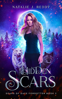 Hidden scars final ebook cover (1).jpg