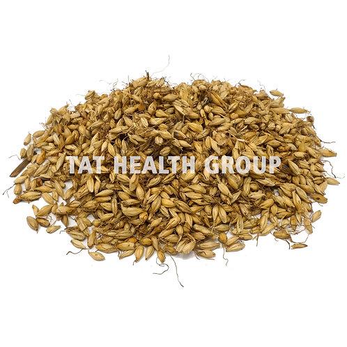 麦芽(炒) Barley sprouts (Dry-fried) (0.5 kg/1.10 lbs)