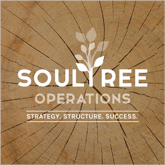Logo Mark and Brand Identity for SoulTree Operations