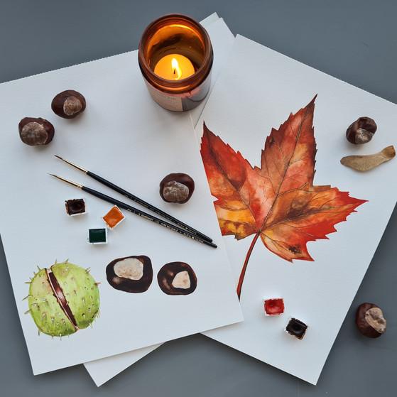 Herfst © StudioSonate