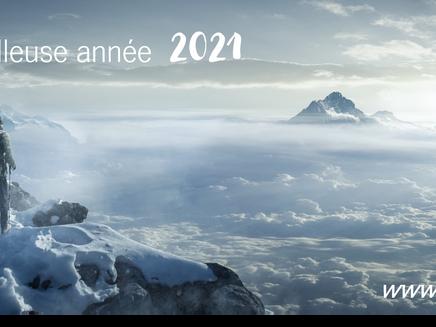 Merveilleuse année 2021