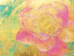 Lotus (蓮)