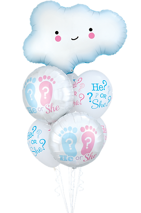 "Ballons LUXURY Nuage ""He Or She?"""