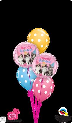 Ballons CLASSIC Petits Chats Bday Color