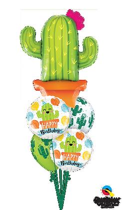 """Ballons MASTER """"Cactus Bday"""""""