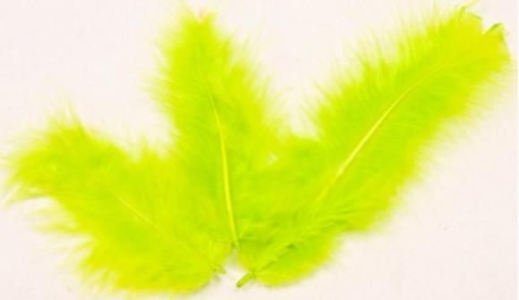 20 Plumes de décoration vert anis 10 cm