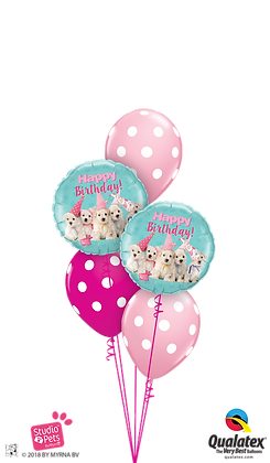Ballons CLASSIC Petits Chiens Bday