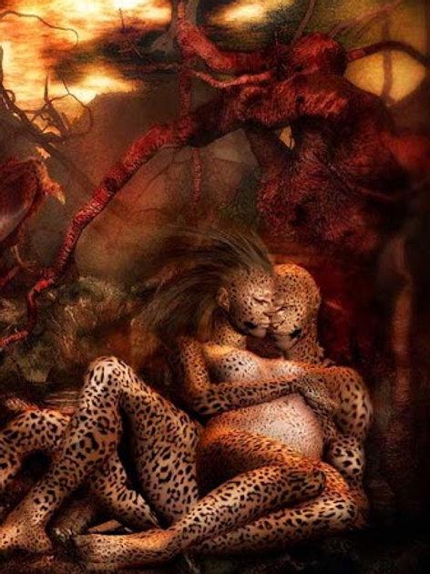Wild Passion Morphic Intense!