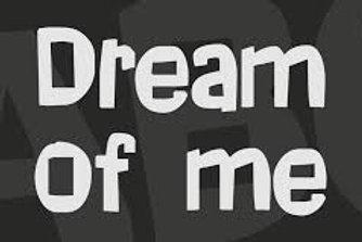 Quick Send a Message to their Dream