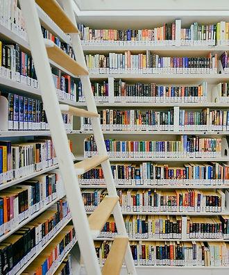 White_Bookshelf_Ladder_Books_edited.jpg