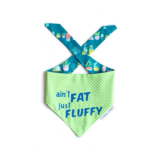 Ain't Fat Just Fluffy