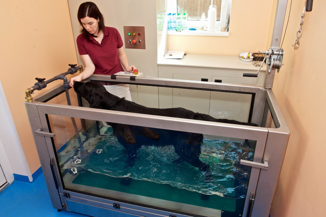 Hydroterapie - rehabilitační vana
