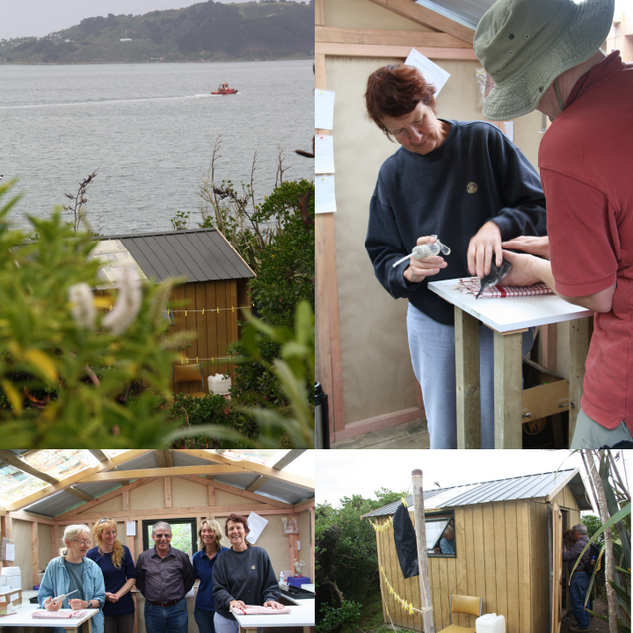 Somes Island Conservation Shed