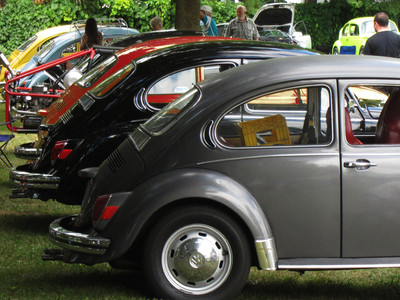 A lineup of classic Beetles at Volksfest 2012, with Greta in the foreground.