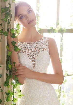 Brautkleider-Hochzeitskleider aus Spitze, fit und flair Schnit, rückenfrei, mit Schleppe